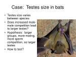 case testes size in bats