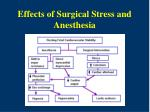 effects of surgical stress and anesthesia