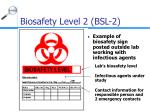 biosafety level 2 bsl 216