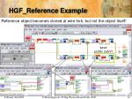 hgf reference example