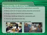 practicum skill examples