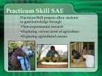 practicum skill sae