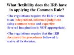 what flexibility does the irb have in applying the common rule