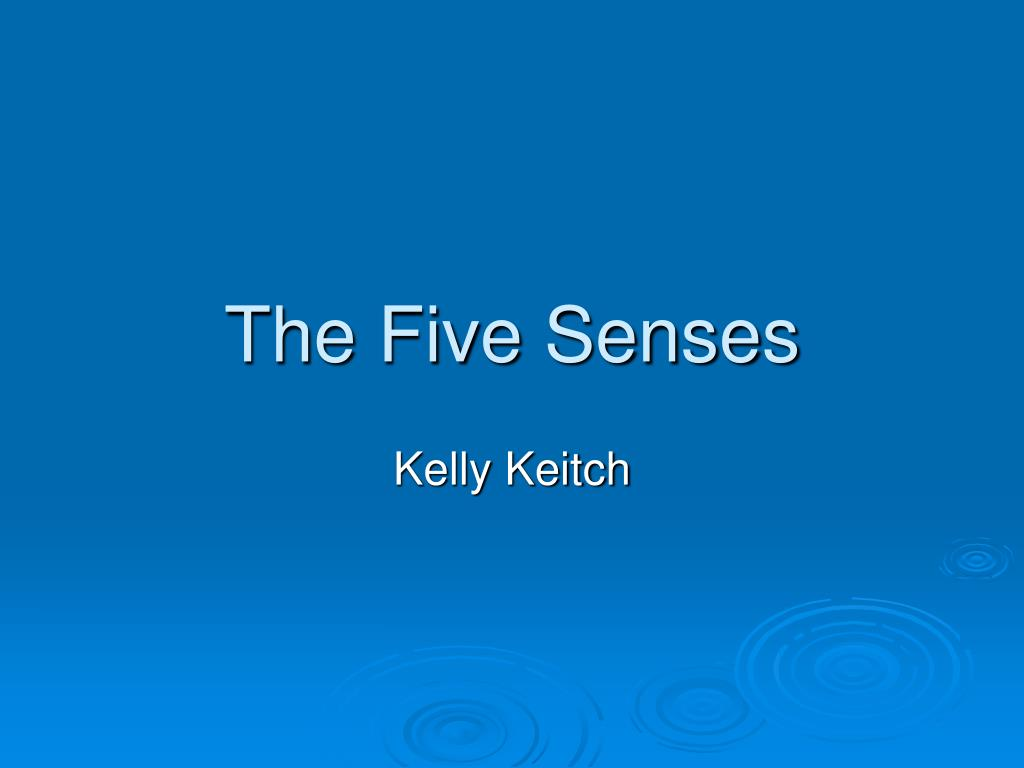 the five senses l.