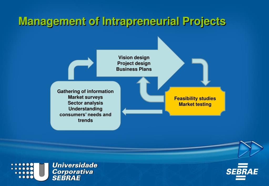 Management of Intrapreneurial Projects