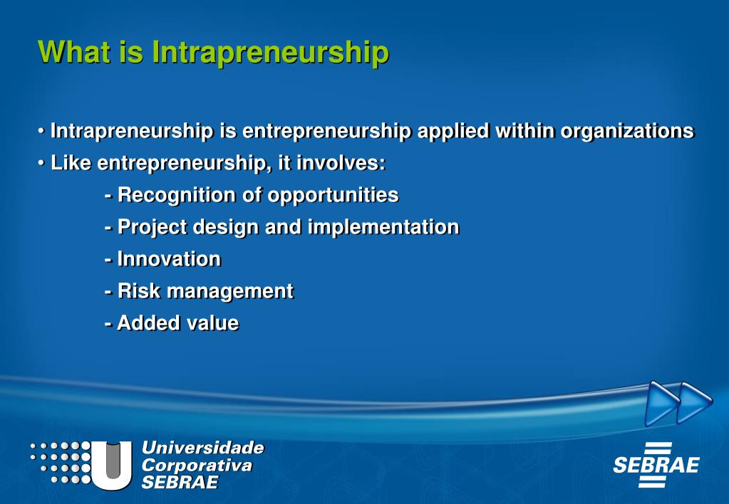 What is Intrapreneurship