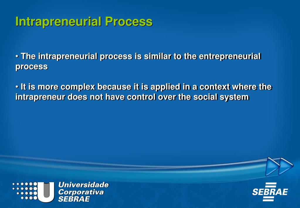 Intrapreneurial Process