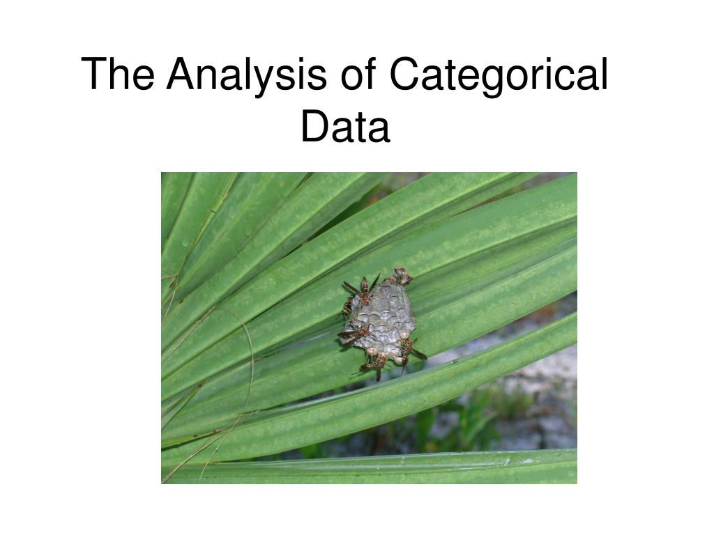 the analysis of categorical data l.
