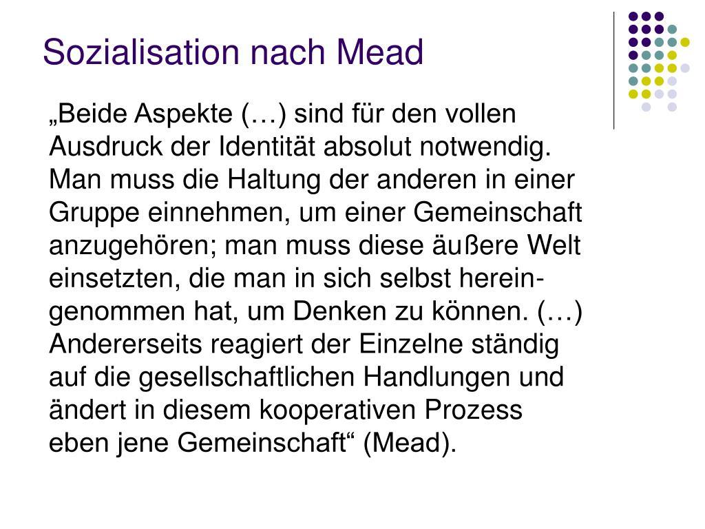 sozialisation nach mead l.