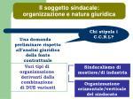 il soggetto sindacale organizzazione e natura giuridica