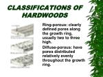 classifications of hardwoods