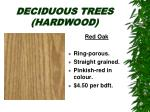 deciduous trees hardwood