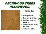 deciduous trees hardwood14