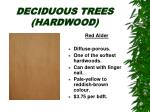 deciduous trees hardwood16