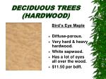 deciduous trees hardwood19