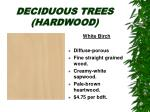 deciduous trees hardwood20