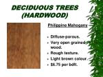 deciduous trees hardwood23