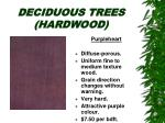 deciduous trees hardwood25