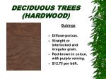 deciduous trees hardwood27