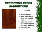 deciduous trees hardwood30