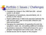 portfolio 1 issues challenges