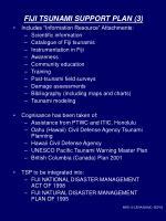 fiji tsunami support plan 3
