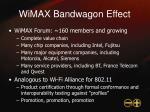 wimax bandwagon effect