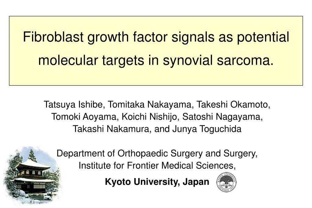 fibroblast growth factor signals as potential molecular targets in synovial sarcoma l.