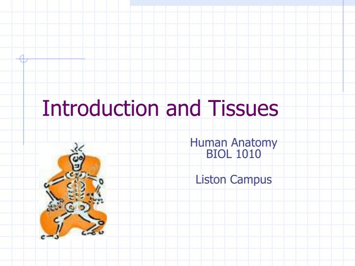 Introduction and tissues