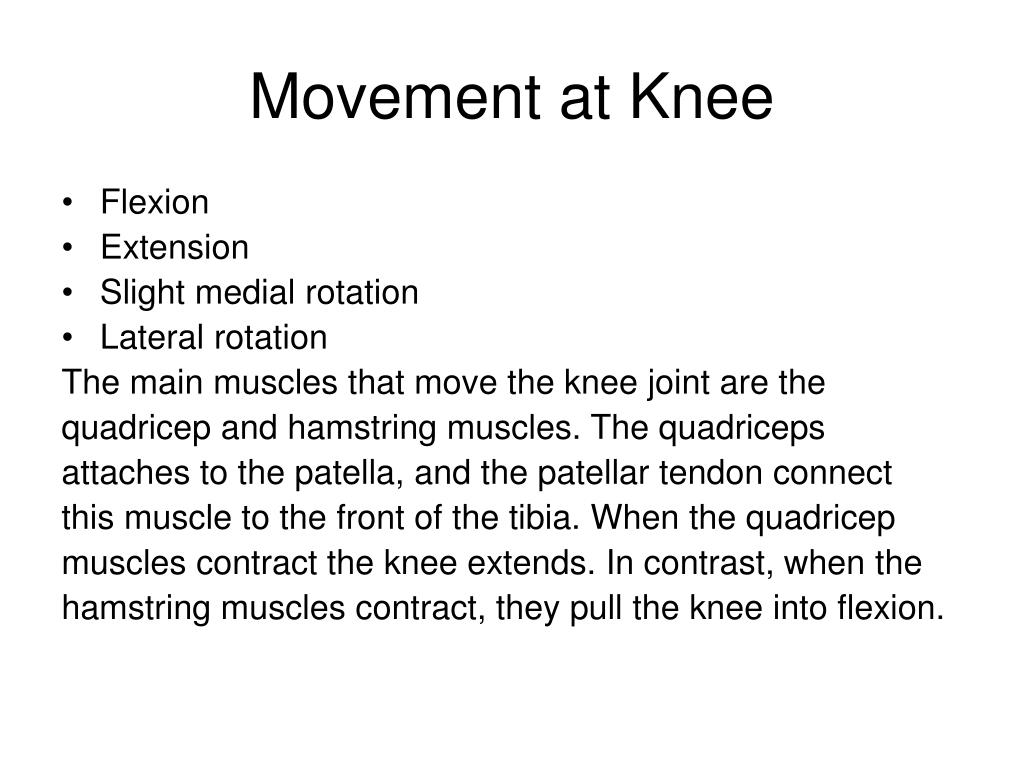 Movement at Knee