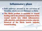 i nflammatory phase17