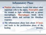 inflammatory phase13