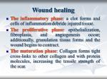 wound healing3