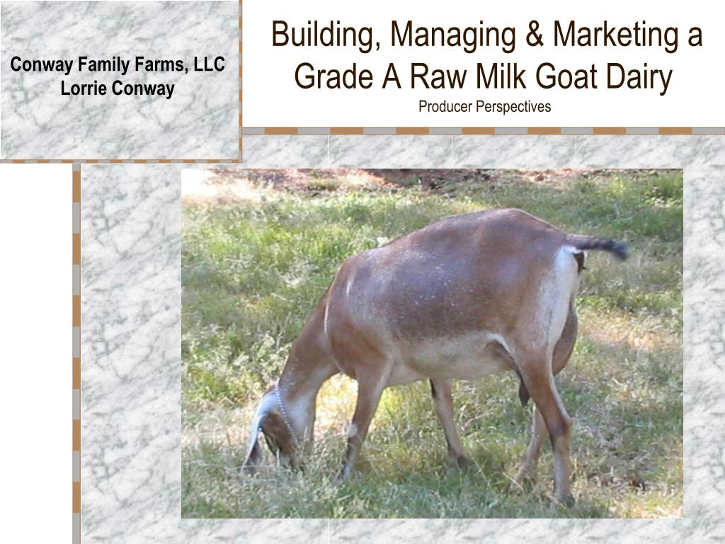 building managing marketing a grade a raw milk goat dairy producer perspectives l.