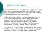 various cloud forms101