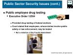 public sector security issues cont35