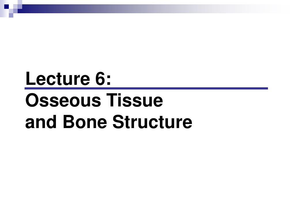 lecture 6 osseous tissue and bone structure l.