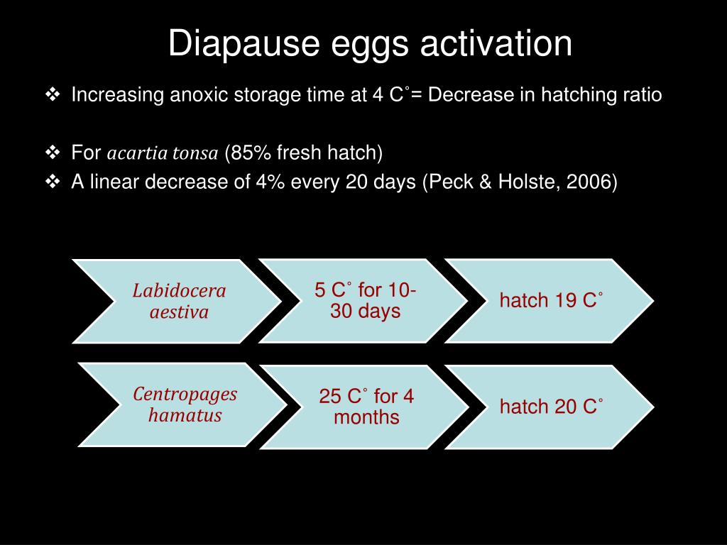 Diapause eggs activation