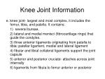 knee joint information