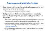 countercurrent multiplier system