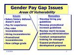 gender pay gap issues areas of vulnerability