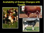 availability of energy changes with growth