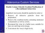 adenovirus custom services28