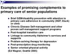 examples of promising complements to primary care of senior populations