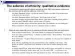 the salience of ethnicity qualitative evidence