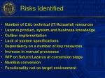 risks identified