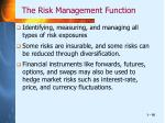 the risk management function