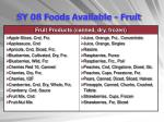sy 08 foods available fruit