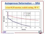 autogenous deformation sra