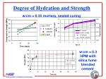 degree of hydration and strength